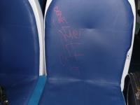 Treno regionale diretto a Fiumicino - 4